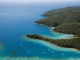 Butterfly Bay - Hook Island - Accommodation Find