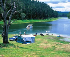 Danbulla National Park and Danbulla State Forest - Accommodation Find