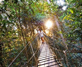 Tree Top Walkway - Accommodation Find