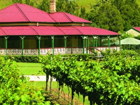 OReillys Canungra Valley Vineyards - Accommodation Find