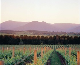 Domaine Chandon - Accommodation Find