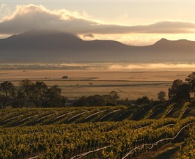 Montara Wines - Accommodation Find