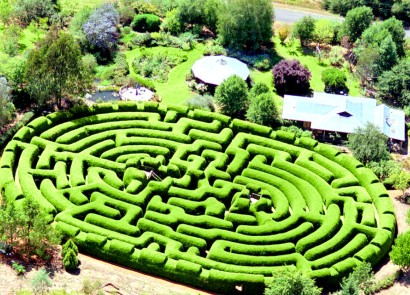 Wandiligong Maze - Accommodation Find