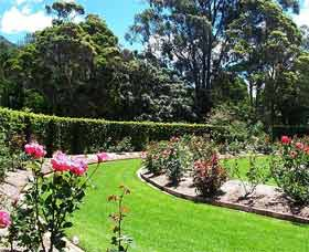Wollongong Botanic Garden - Accommodation Find