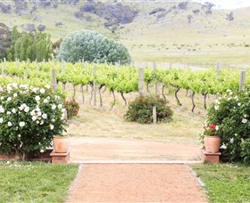 Brindabella Hills Winery - Accommodation Find