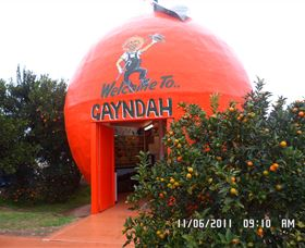 Gayndahs Big Orange - Accommodation Find