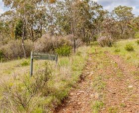 Old Mountain Road Walking Track - Accommodation Find