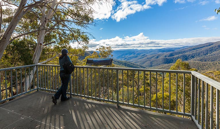 Wallace Creek lookout - Accommodation Find