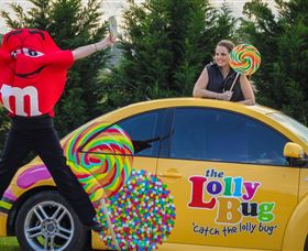 The Lolly Bug - Accommodation Find