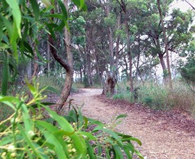 Mount Mutton Walking Trail - Accommodation Find