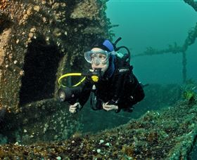 Ex-Hmas Adelaide Dive Site - Accommodation Find