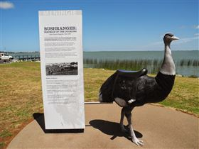 Birdman of the Coorong - Accommodation Find