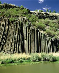 Organ Pipes National Park - Accommodation Find