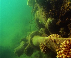 Wreck Diving at Magnetic Island - Accommodation Find