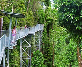 Mamu Tropical Skywalk - Accommodation Find