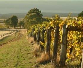 Captains Creek Organic Wines - Accommodation Find