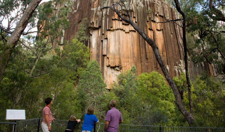 Sawn Rocks walking track