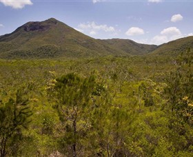 Kutini-Payamu Iron Range National Park CYPAL - Accommodation Find