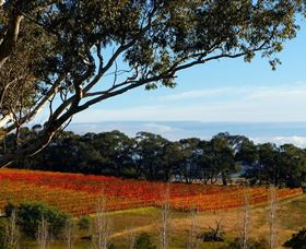 Bloodwood Estate - Accommodation Find