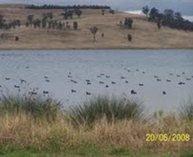 Lake Liddell Recreation Area - Accommodation Find