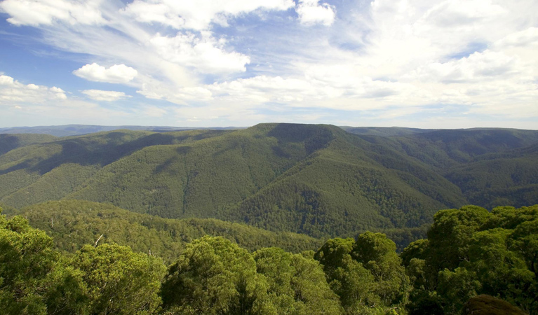 Barrington Tops National Park - Accommodation Find