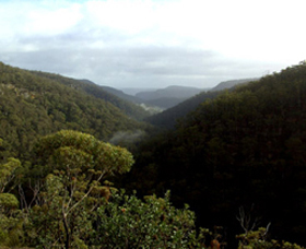 Nattai Gorge Lookout - Accommodation Find