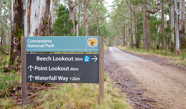Beech lookout - Accommodation Find