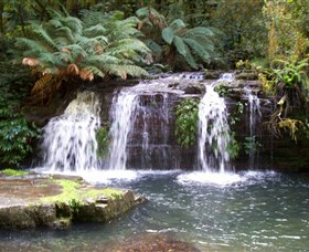 Barrington Tops National Park Walks - Accommodation Find