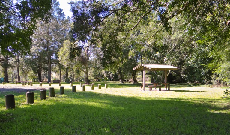 Moore Park picnic area - Accommodation Find