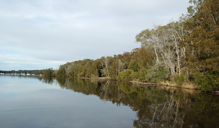 Lake Macquarie State Conservation Area - Accommodation Find