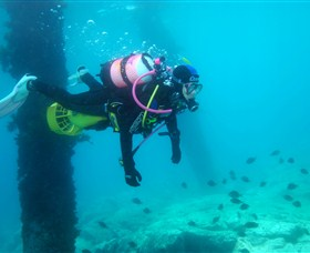 Shellharbour Scuba  Photography Centre - Accommodation Find