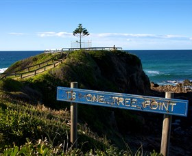 One Tree Point Lookout and Picnic Area - Accommodation Find
