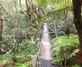 Bemm River Scenic Reserve - Accommodation Find