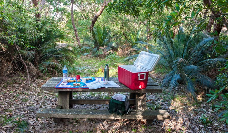 Broadwater Beach picnic area - Accommodation Find