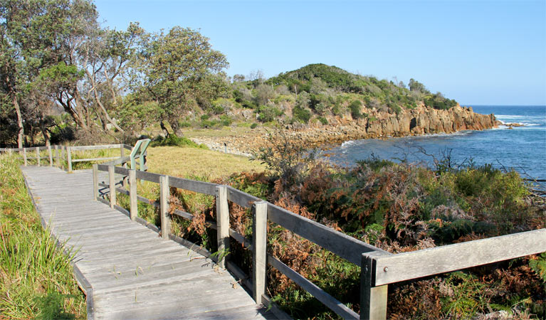 Mimosa Rocks walking track - Accommodation Find