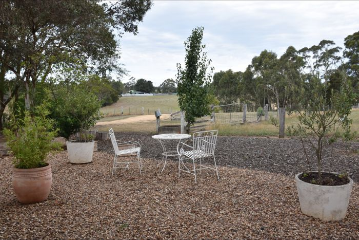 Cygnet Park Country Retreat - Accommodation Find