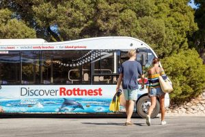 Rottnest Island Tour from Perth or Fremantle including Bus Tour - Accommodation Find