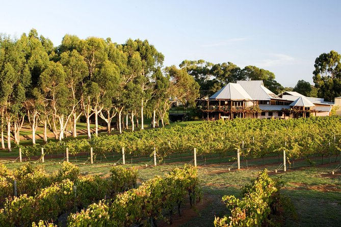 Margaret River and Geographe Bay Region Day Trip from Perth - Accommodation Find