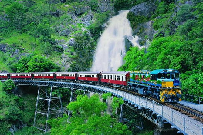 Full-Day Tour with Kuranda Scenic Railway Skyrail Rainforest Cableway and Hartley's Crocodile Adventures from Cairns - Accommodation Find