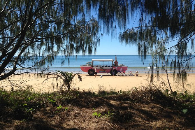 1770 Coastline Tour by LARC Amphibious Vehicle Including Picnic Lunch - Accommodation Find