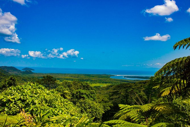 Cape Tribulation Day Tour