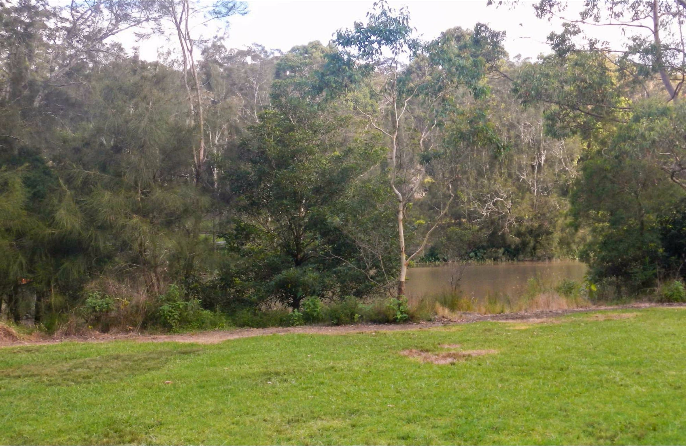 Bakers Flat picnic area - Accommodation Find