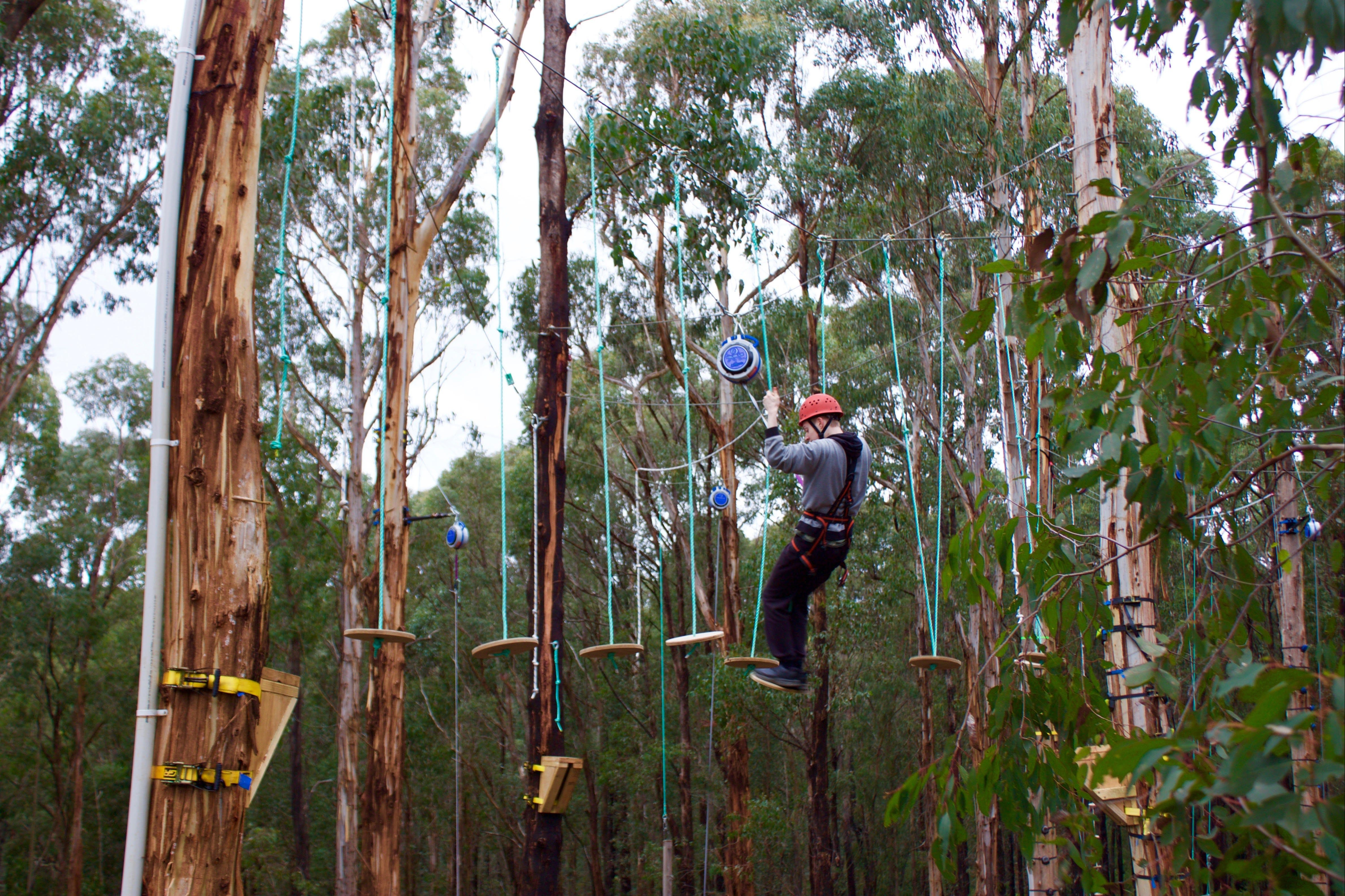 Kinglake Forest Adventures - Accommodation Find