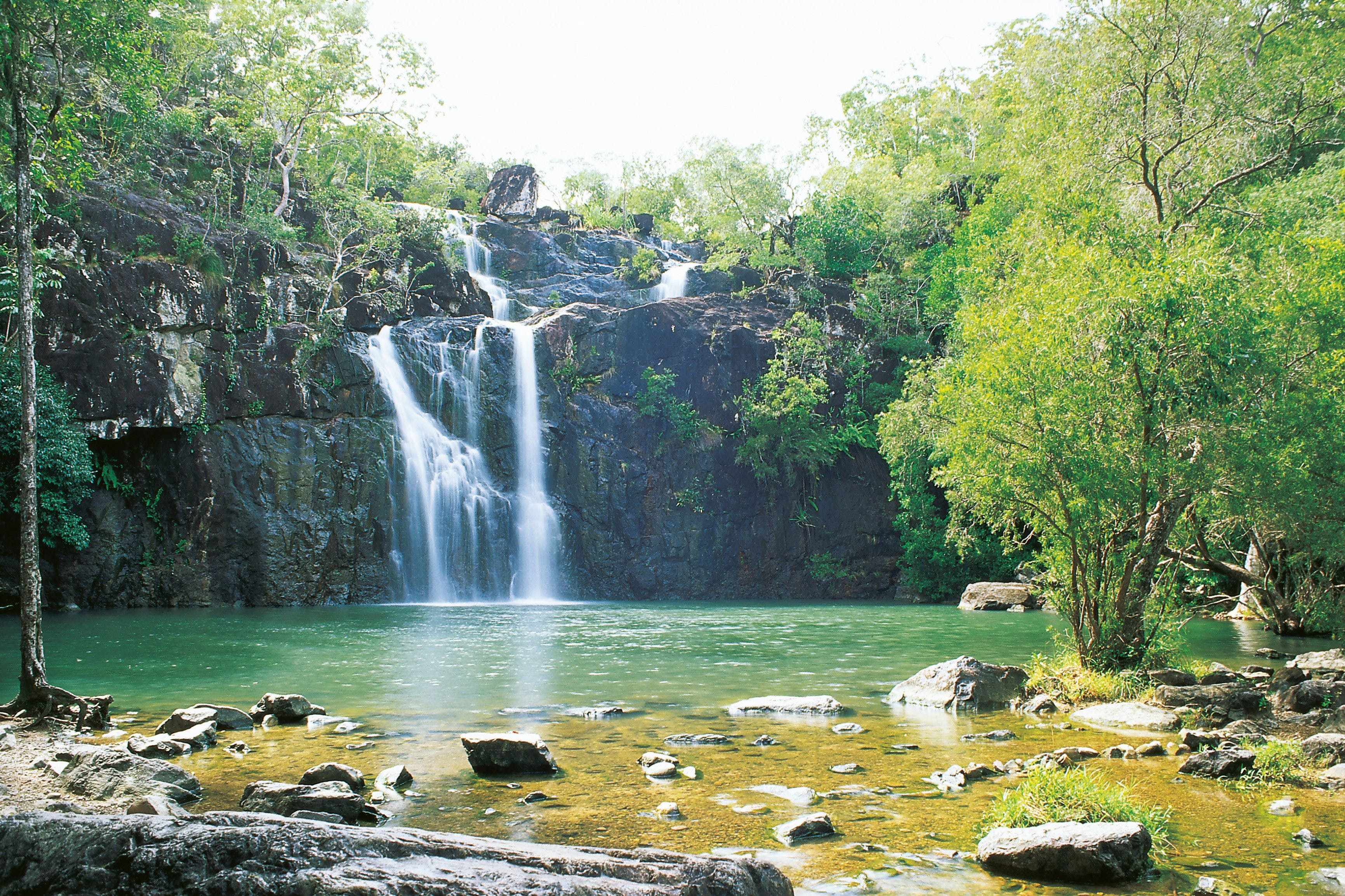 Airlie Beach to Cedar Creek Falls - Accommodation Find