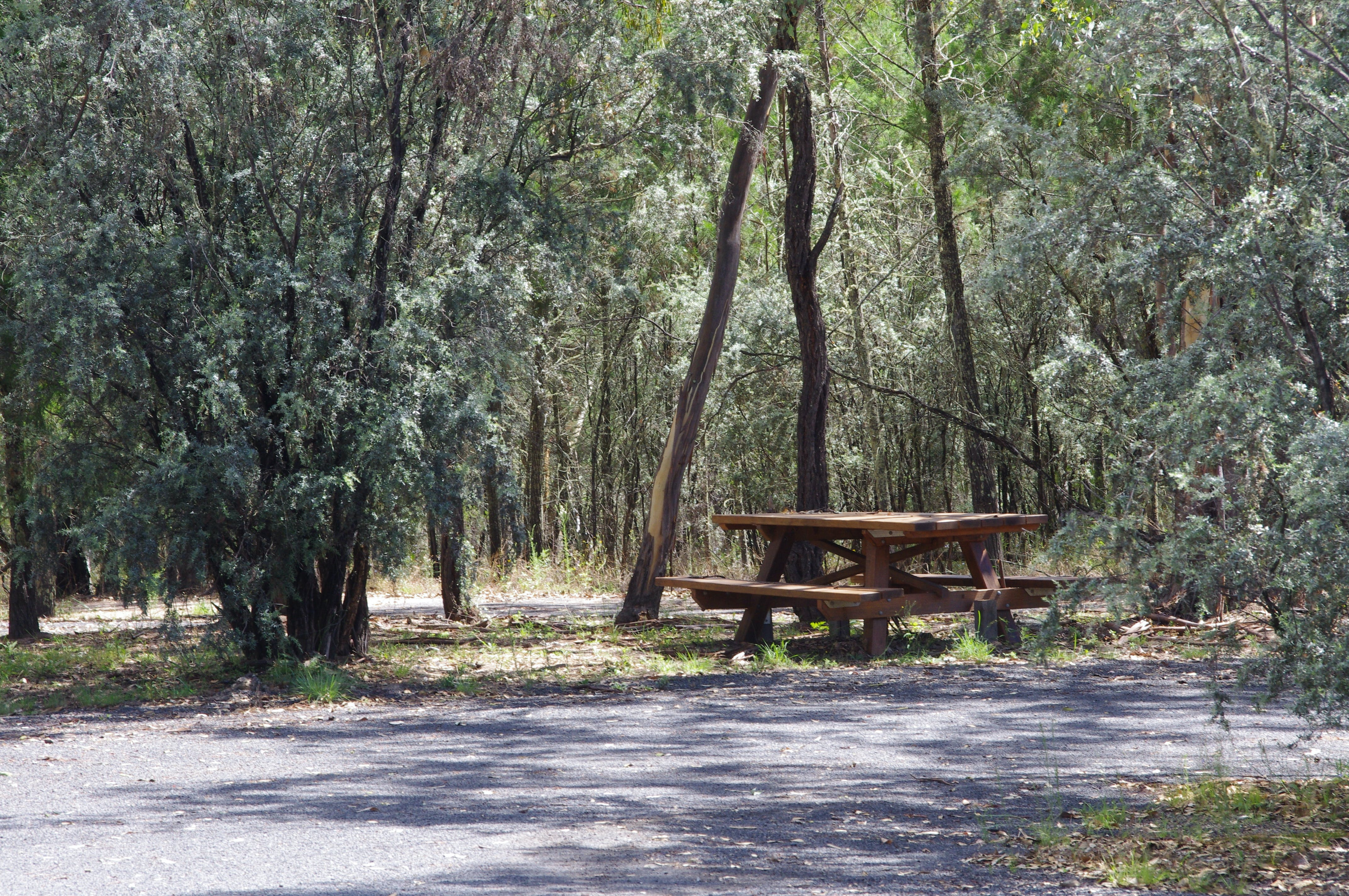 Goonoowigall State Conservation Area - Accommodation Find