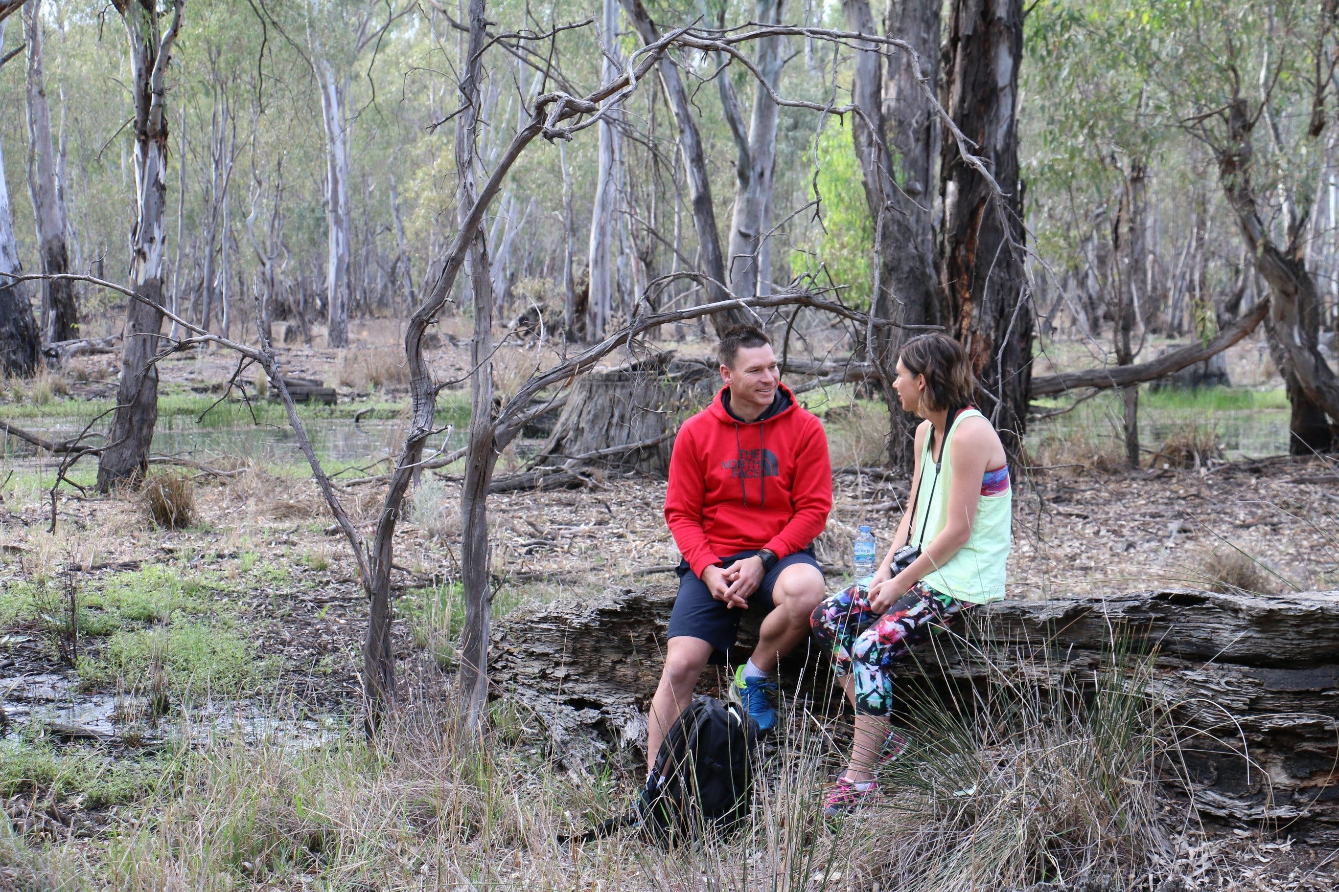 Gunbower Island Forest Drive - Accommodation Find