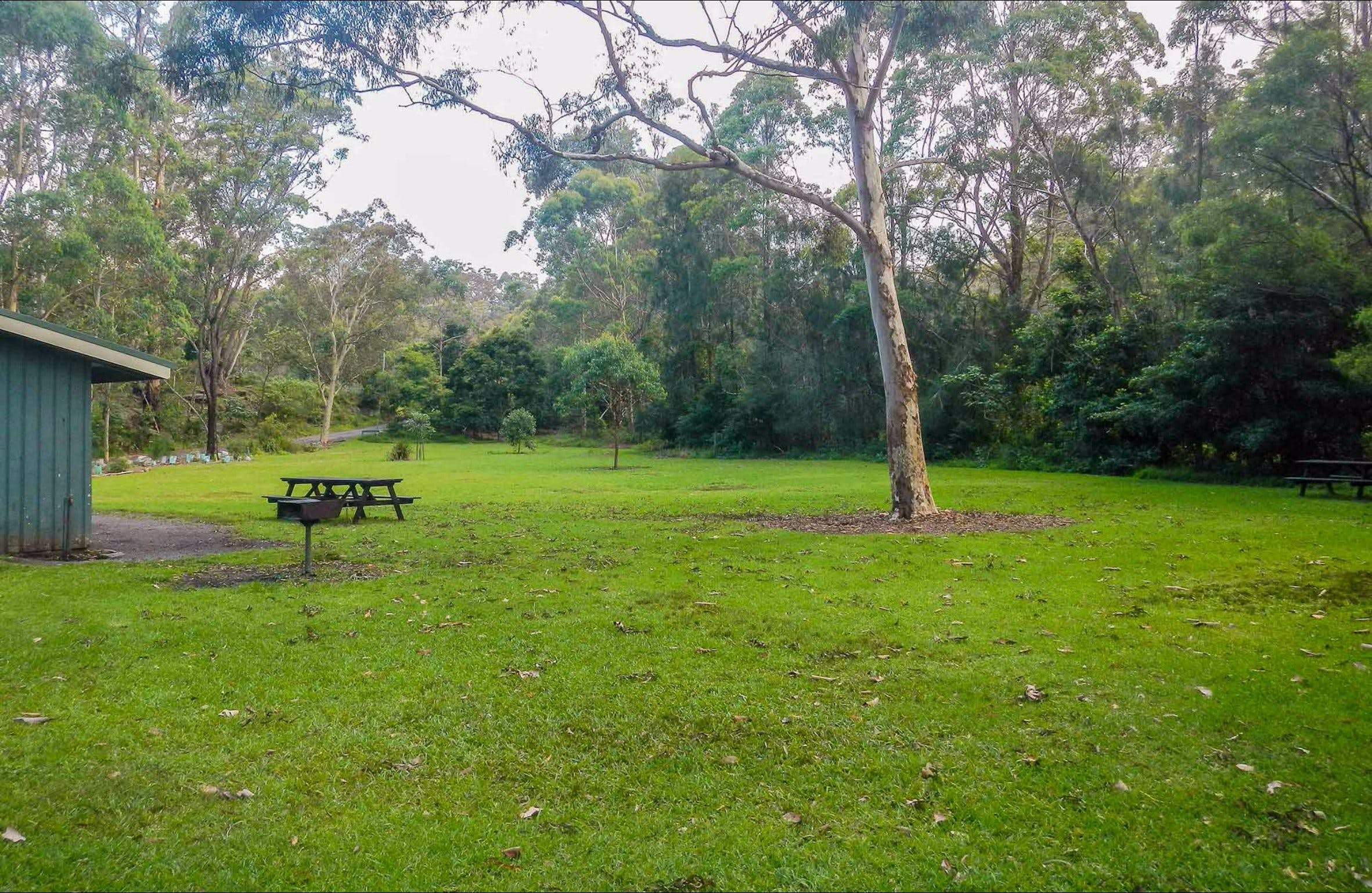 Haynes Flat picnic area - Accommodation Find