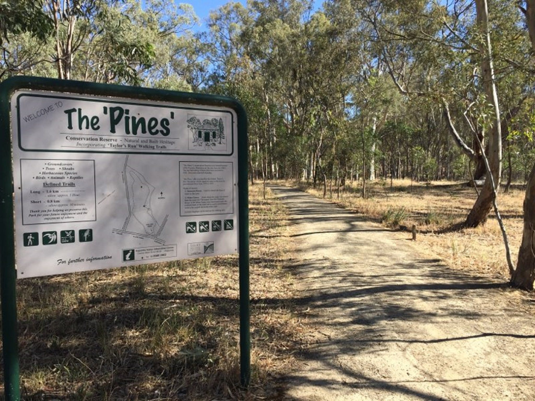 The Pines Conservation Reserve - Accommodation Find