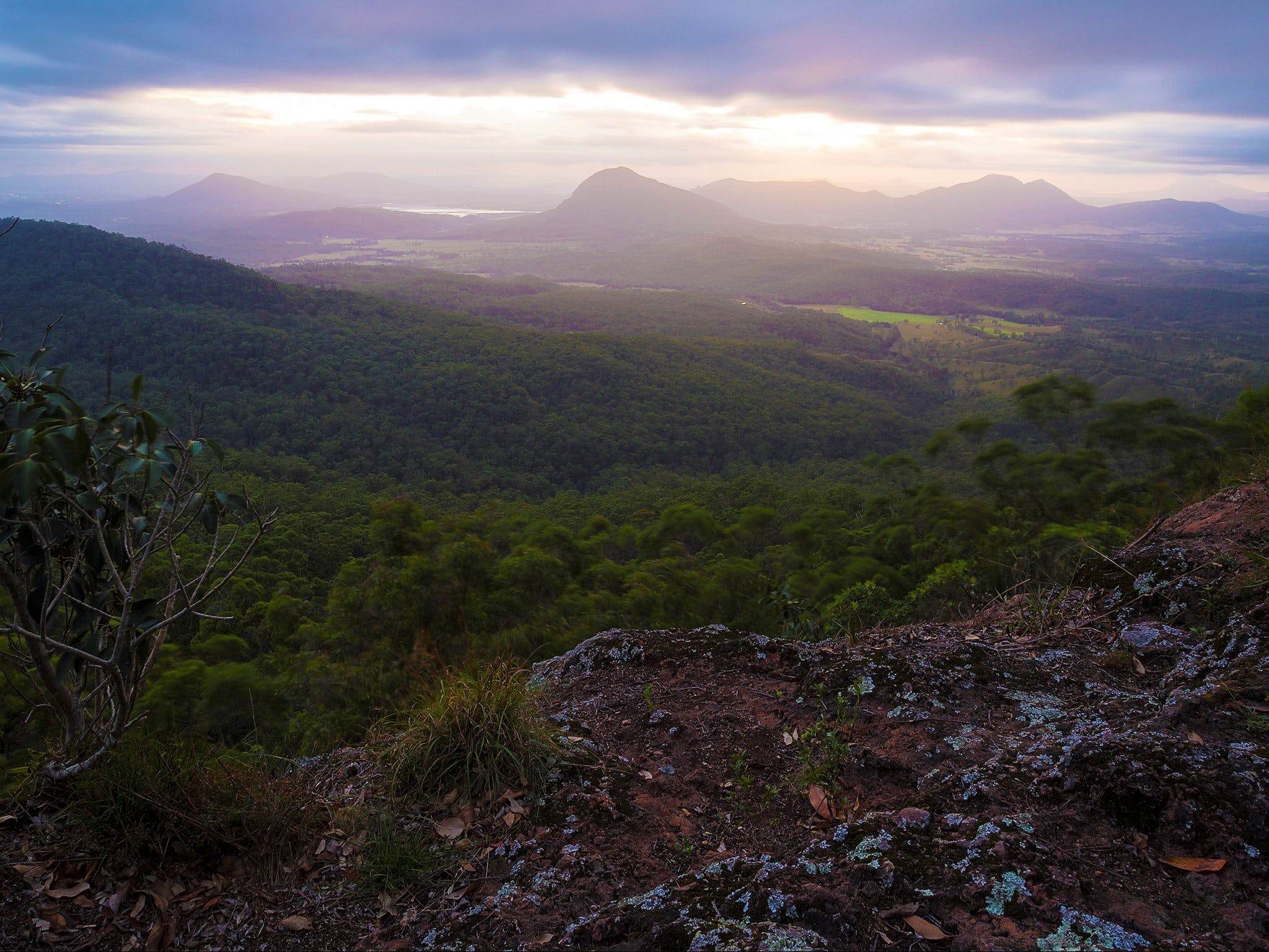 Cunninghams Gap and Spicers Gap Main Range National Park - Accommodation Find
