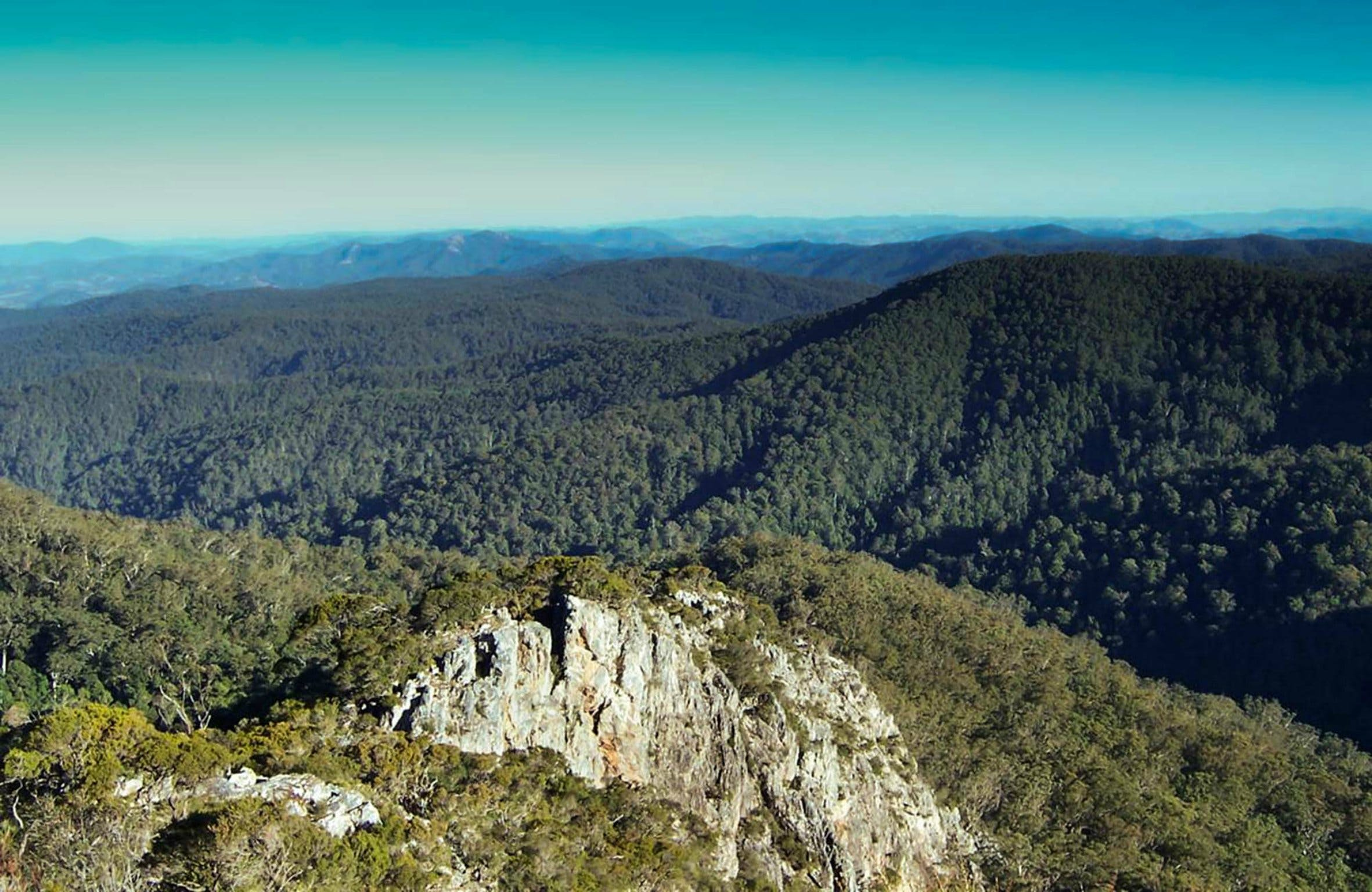 Tapin Tops National Park - Accommodation Find
